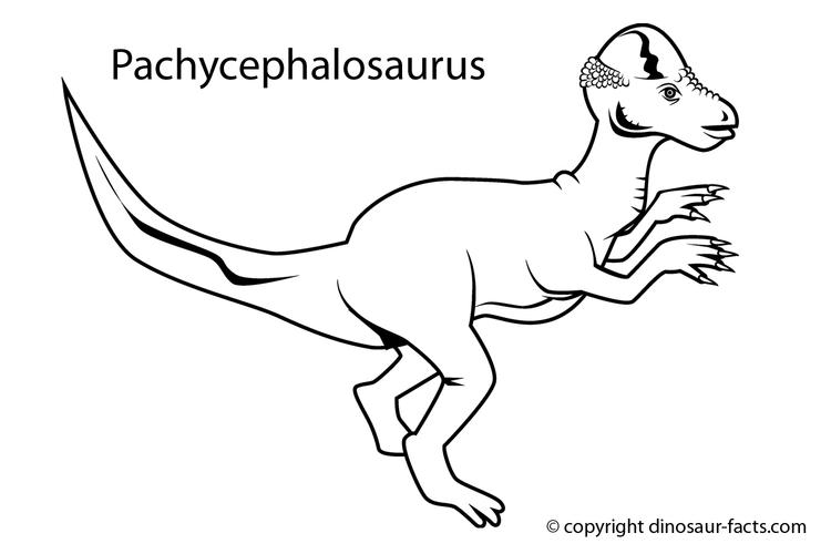 Dinosaurs Coloring Pages With Names For Kindergarten