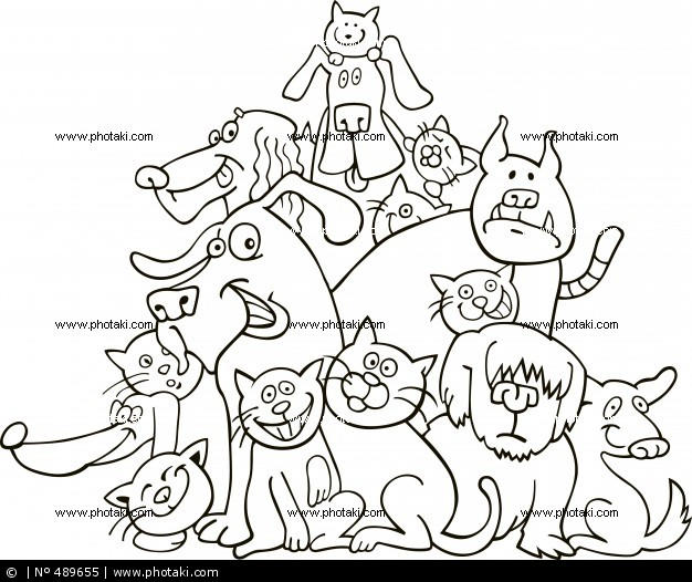 Dog And Cat Coloring Pages Family