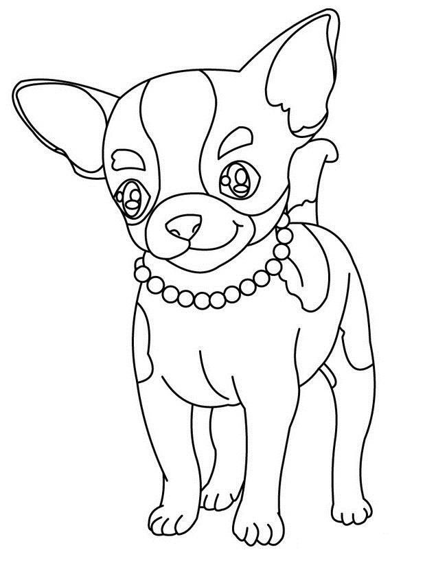 Dog Coloring Pages Chihuahua