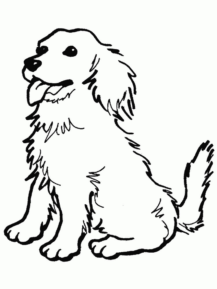 Dog coloring pages golden retriever puppy