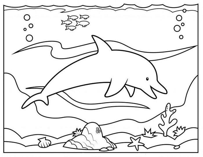 Dolphin Coloring Pages For Kindergartens