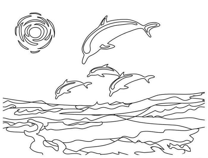 Dolphin Coloring Pages Online