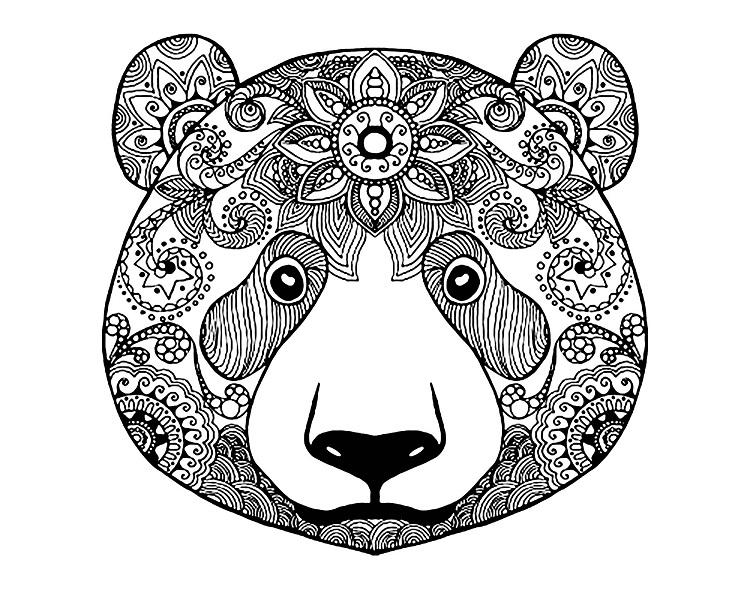 Doodle Bear Coloring Pages