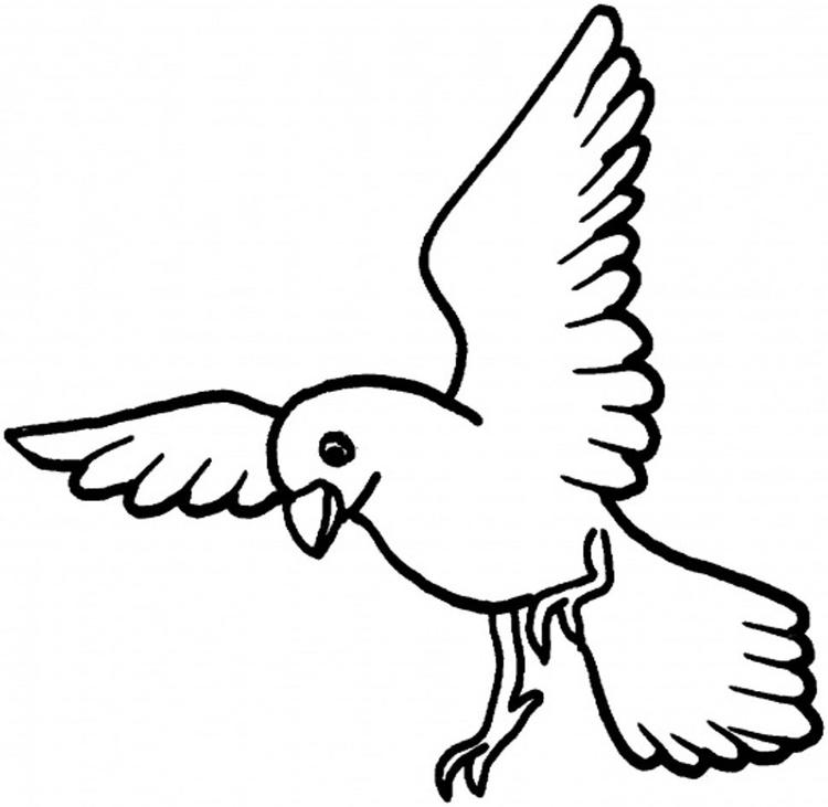 Dove Bird Coloring Page For Kids