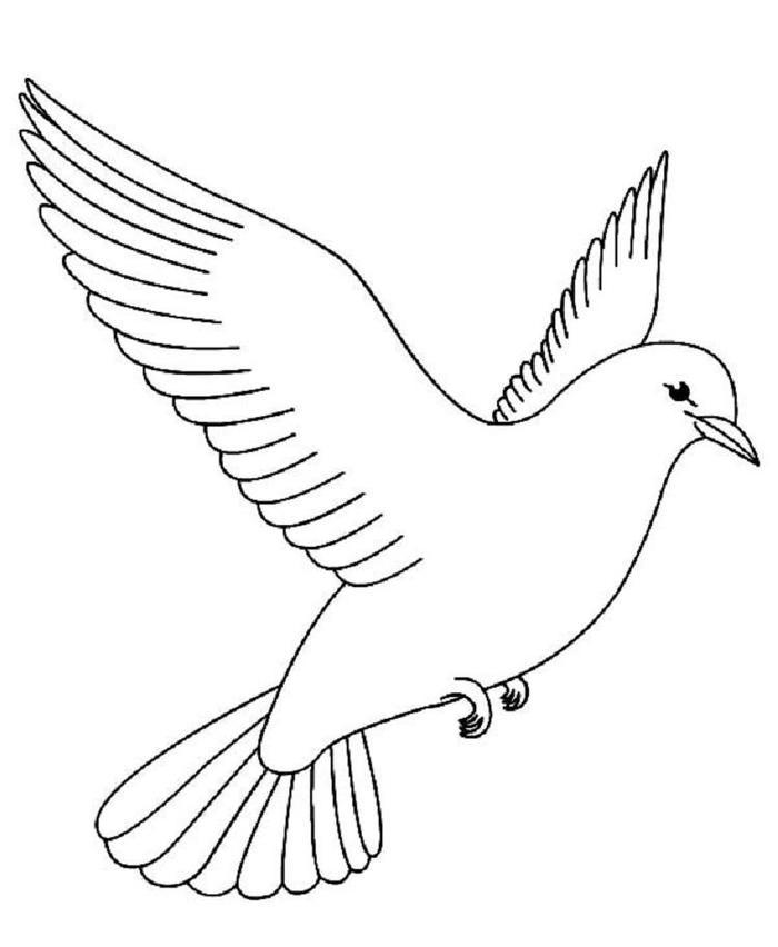 Dove Bird Coloring Pages