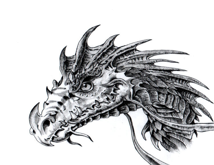 Dragon Head Coloring Pages For Children 1
