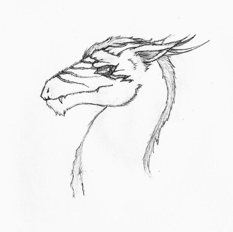 Dragon Head Coloring Pages For Children