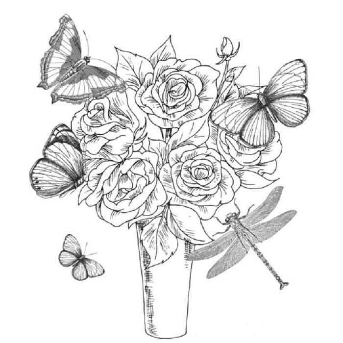 Dragonfly And Butterfly Coloring Pages