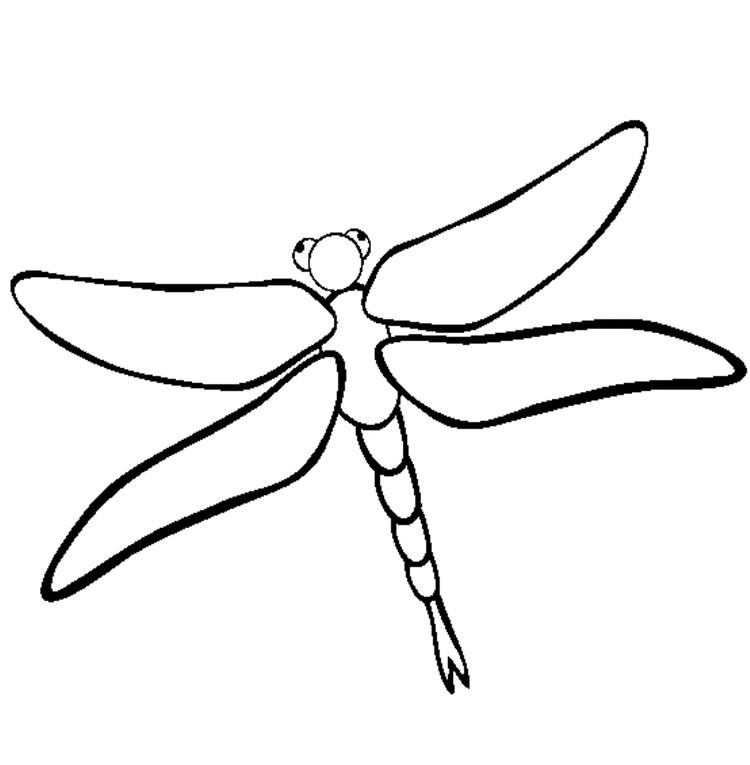 Dragonfly Coloring Pages Of Animals Free
