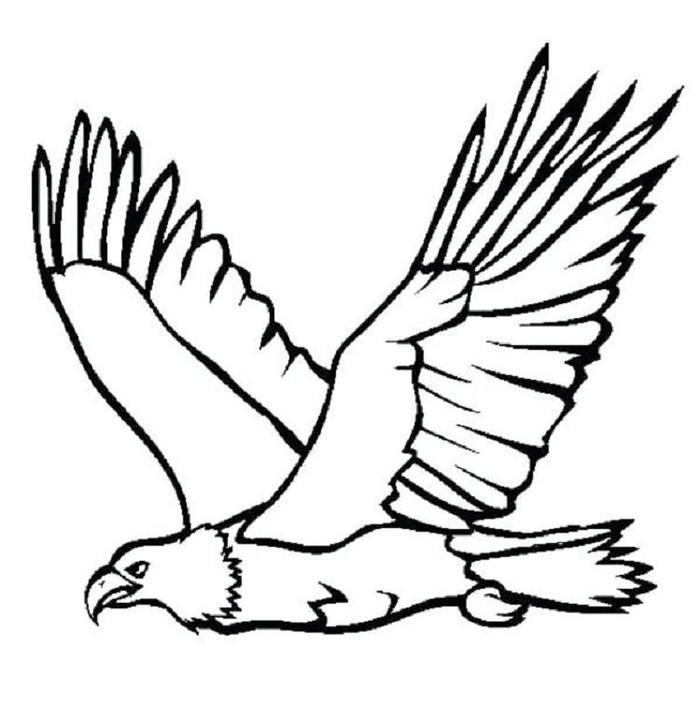 Eagles Coloring Pages For Kids