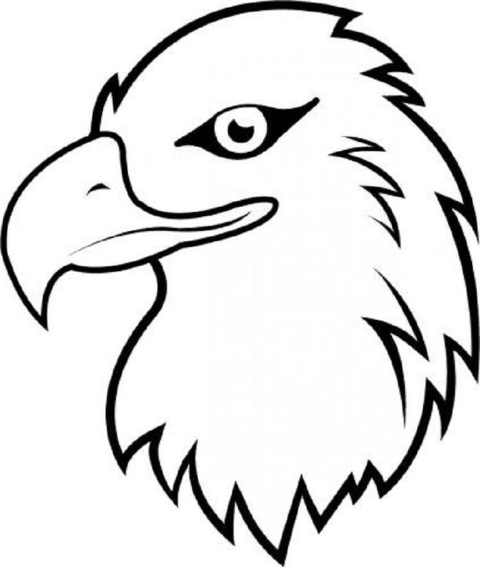 Eagles Head Coloring Pages