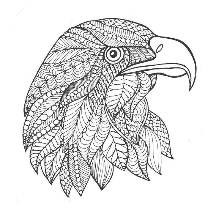 Eagles Zentangle Coloring Pages