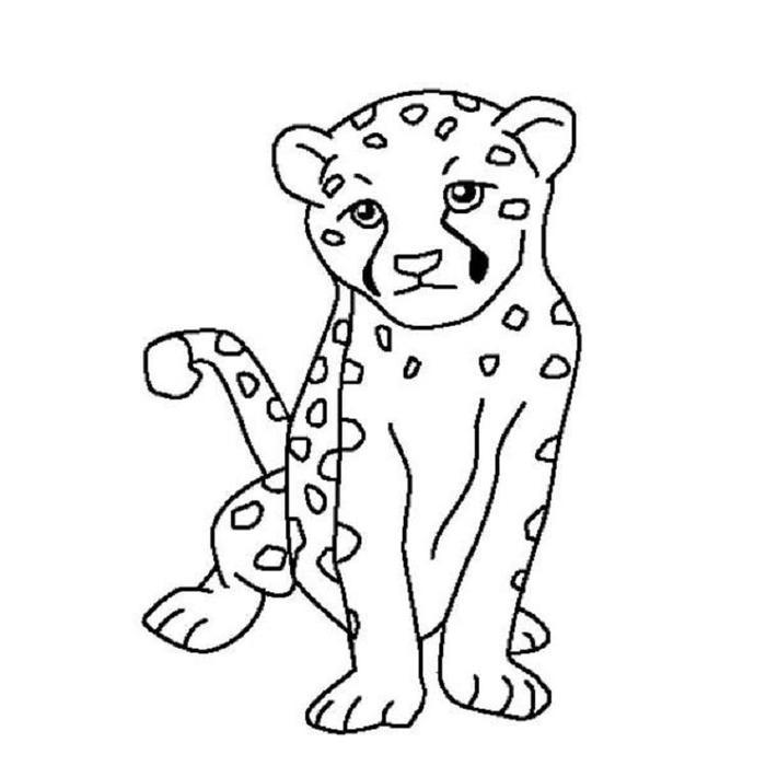 Easy cheetah coloring pages
