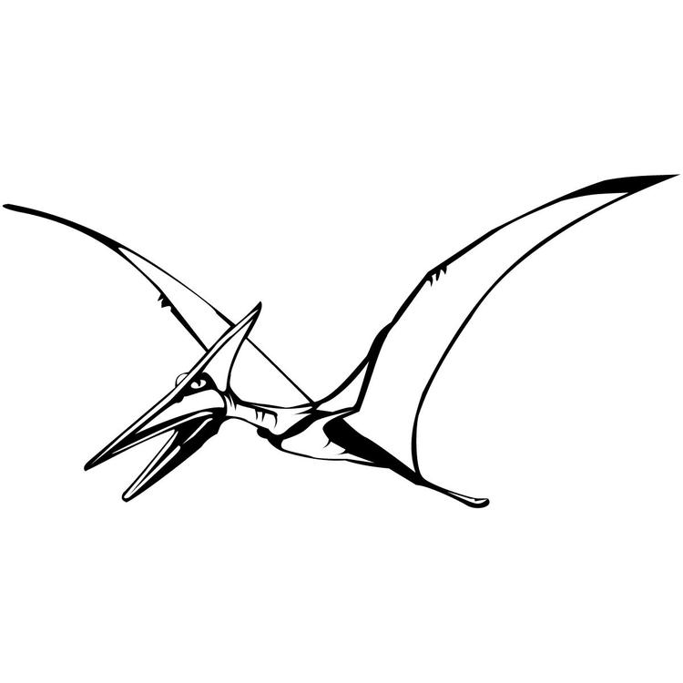 Easy Flying Dinosaurs Coloring Pages 1