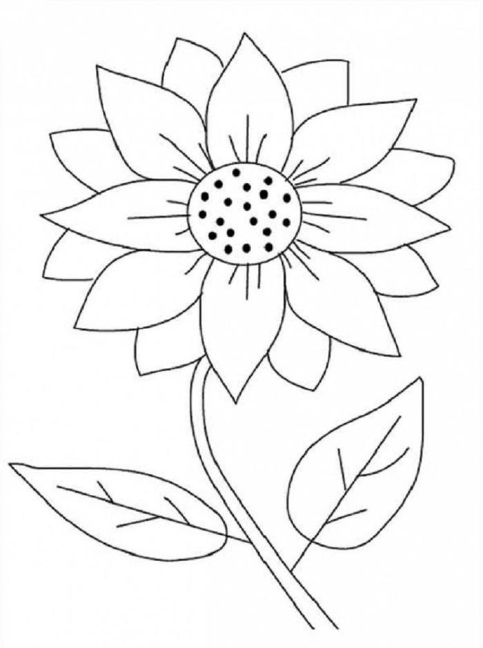 Easy Sunflower Coloring Pages