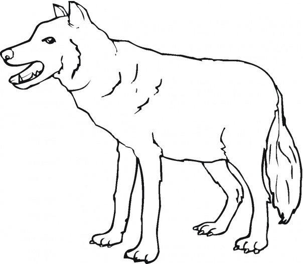 Easy Wolf Coloring Pages