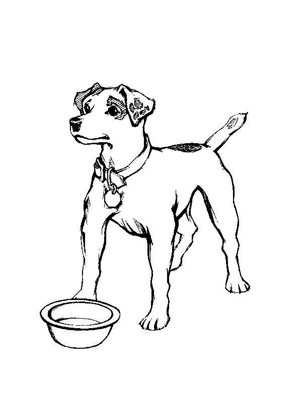 Eat Realistic Dog Coloring Pages