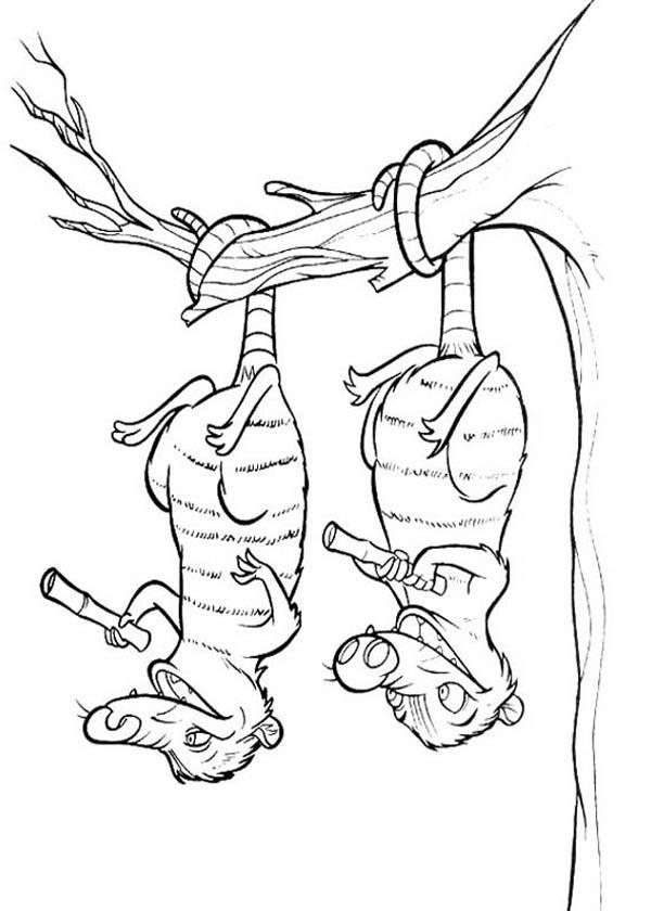Eddie And Crash Hanging Upside Down On Tree In Ice Age Coloring Pages