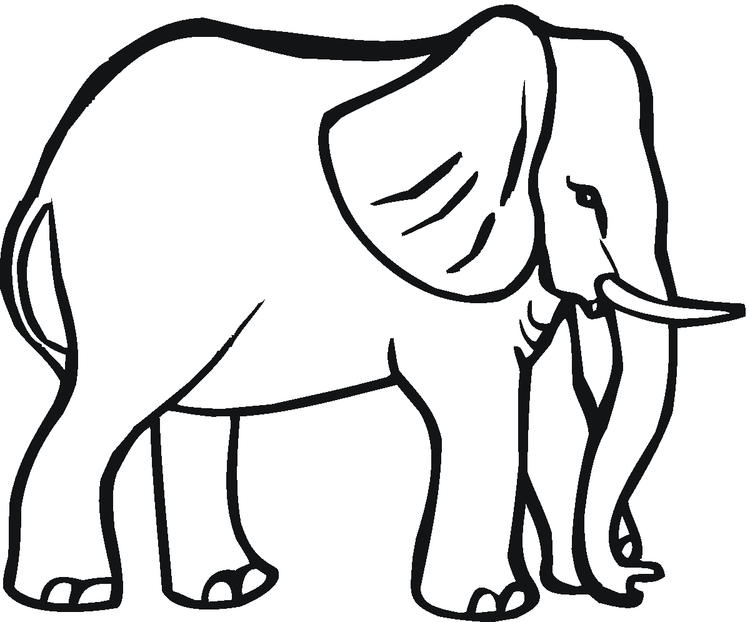 Elephant Coloring Pages 4
