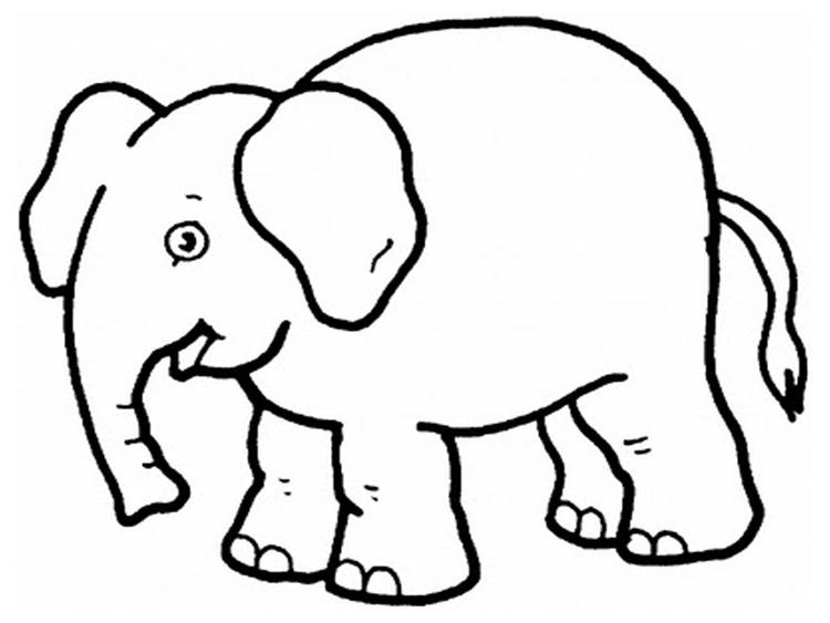 Elephant Coloring Pages For Toddler