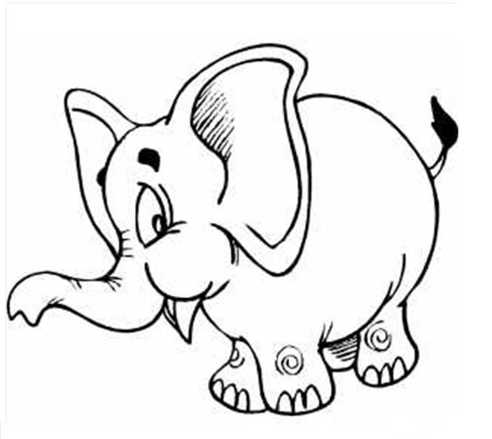 Elephant Coloring Pages Sheets Pictures Printable Coloring Pages