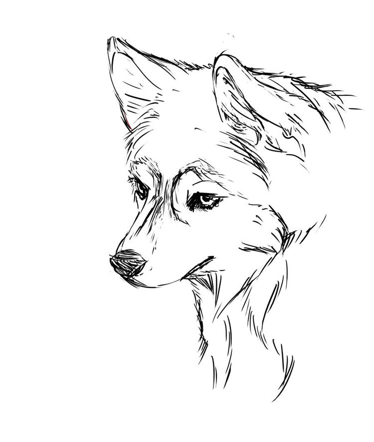 Face Realistic Husky Coloring Pages