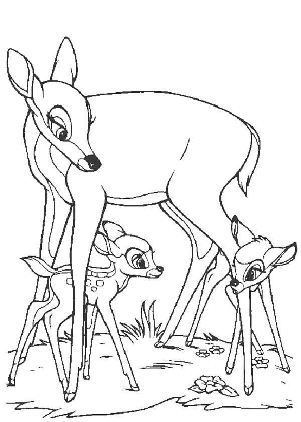 Faline And Bambi Play Under Bambis Mother Legs Coloring Pages