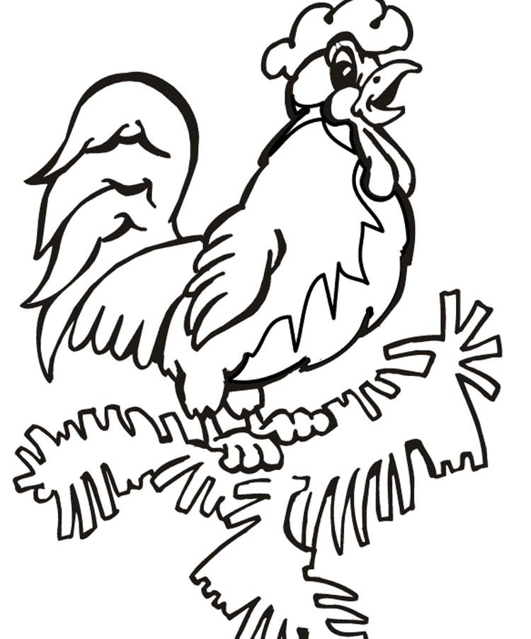 Farm Animal Coloring Pages Rooster Pic