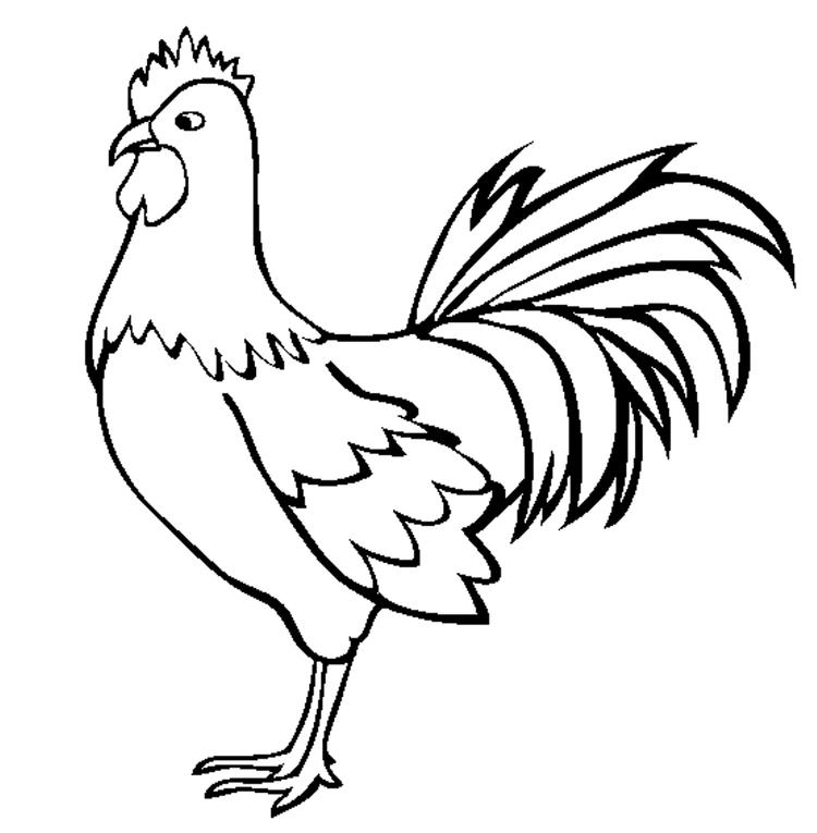 Farm Animals Coloring Pages Rooster