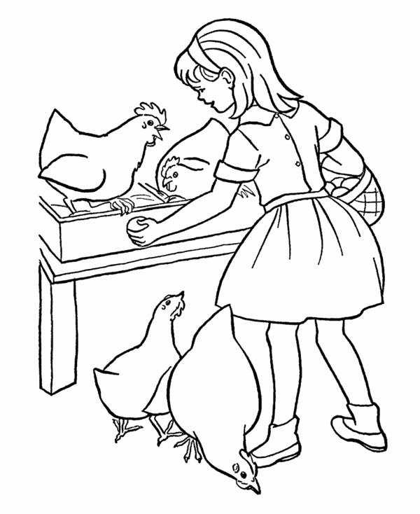 Farm Life Coloring Pages Take Egg From Chicken
