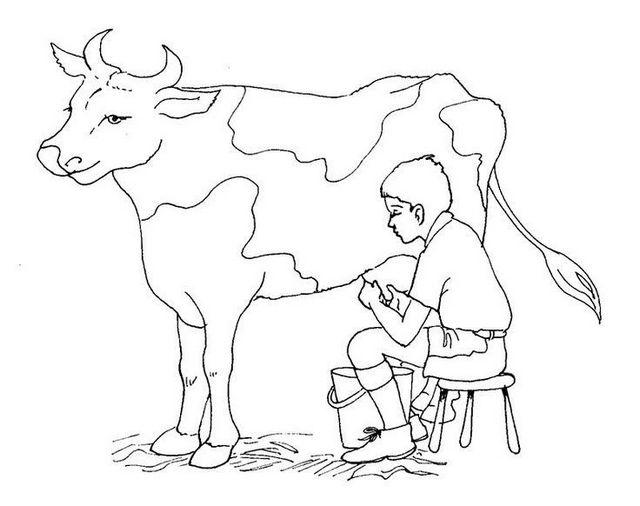 Farmer Taking Milk Cow Coloring Pages