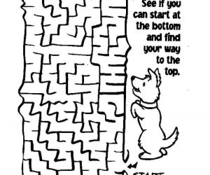 Find Your Way Puzzle
