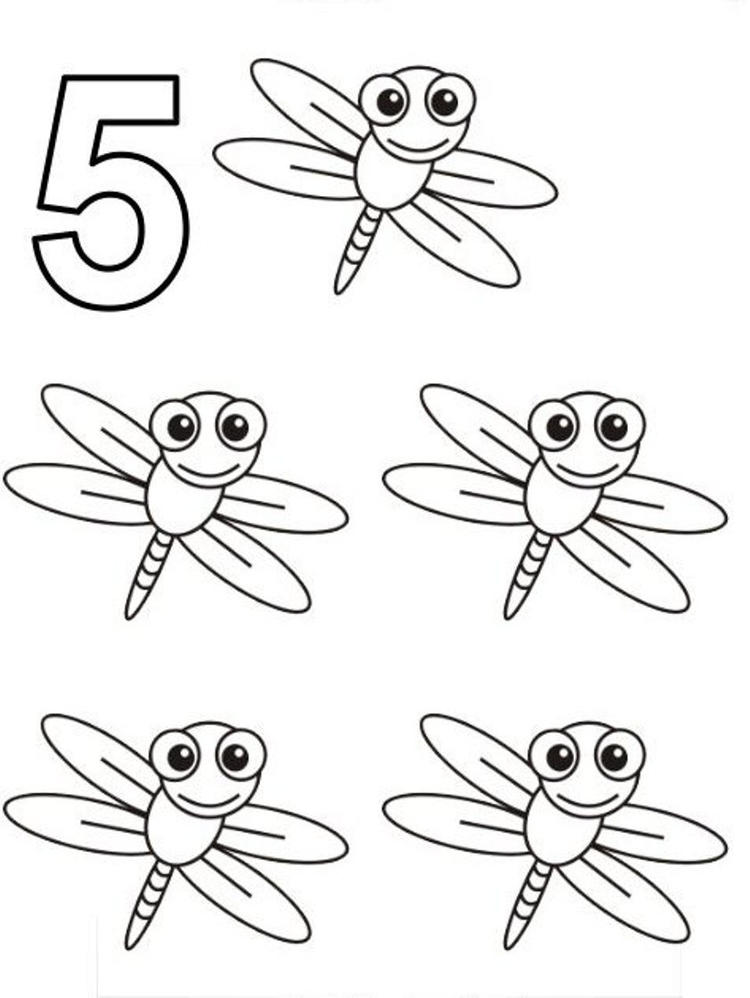 Five Dragonfly Coloring Pages Of Animals