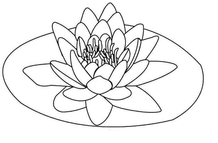 Floating Lotus Flower Coloring Pages