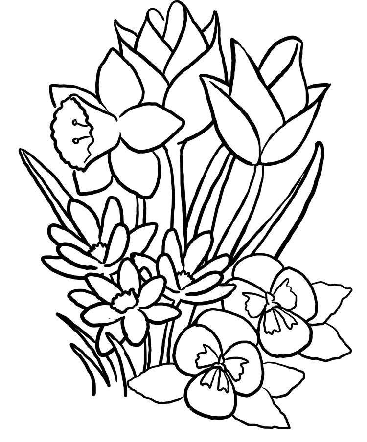 Floral Coloring Pages For Kids