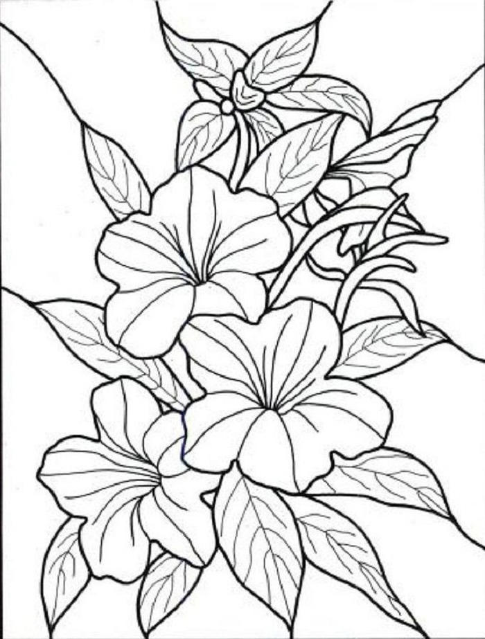 Flower Coloring Pages For Girl