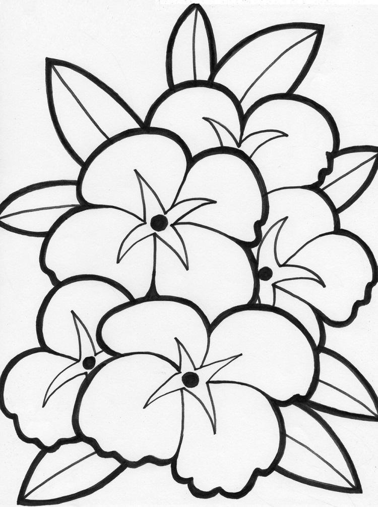 Flower Coloring Pages Online