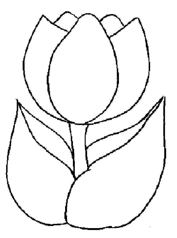 Flower Coloring Pages Templates
