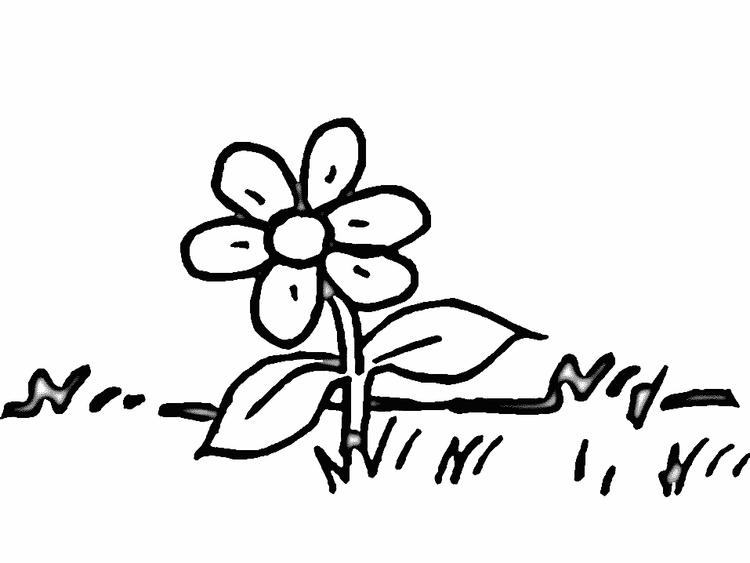 Flower Preschool Coloring Pages For Autumn