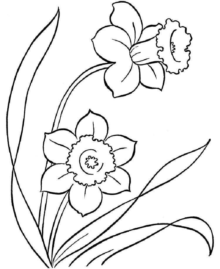 Flower Themed Coloring Pages