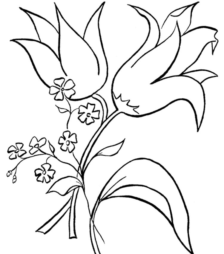 Flowers Coloring Pages Pics