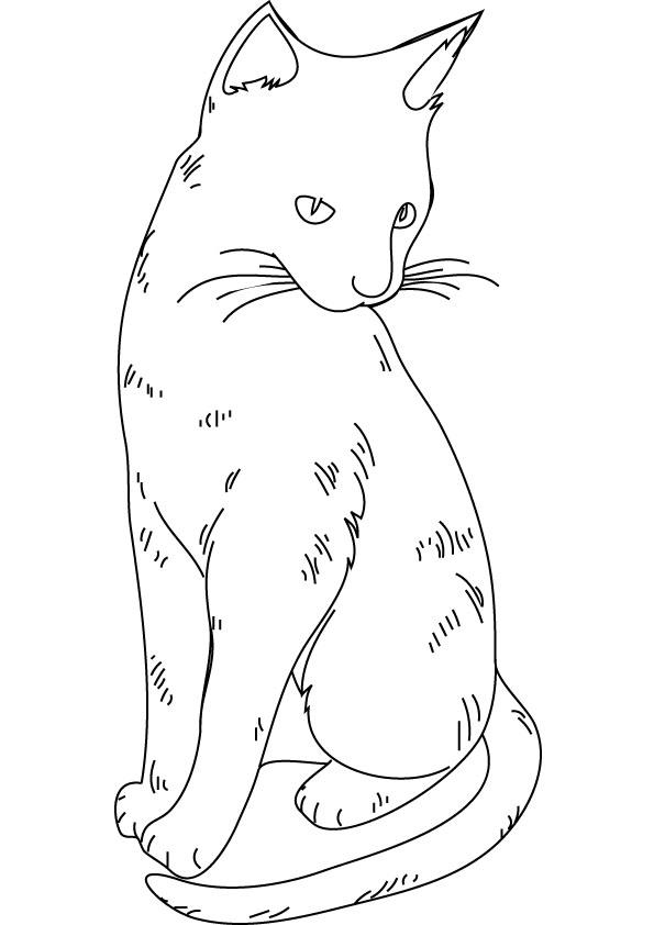 Fluffy Realistic Cat Coloring Pages