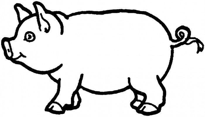 Free Coloring Pages A Pig