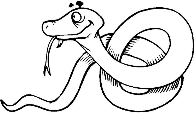 Free Coloring Pages Of Snake