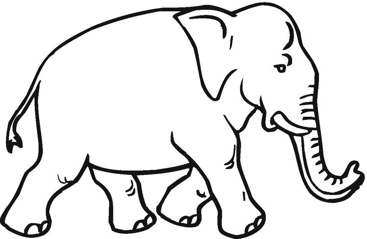 Free Elephant Coloring Pages 1