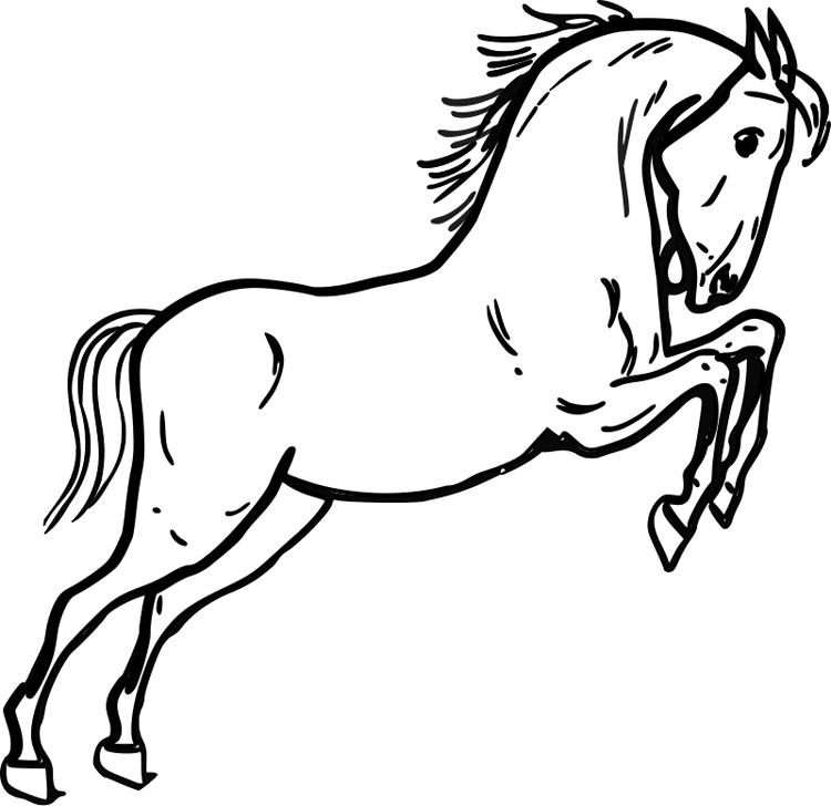 Free Mustang Horse Coloring Pages