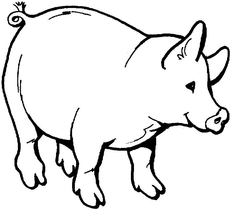 Free Pig Toddler Coloring Pages