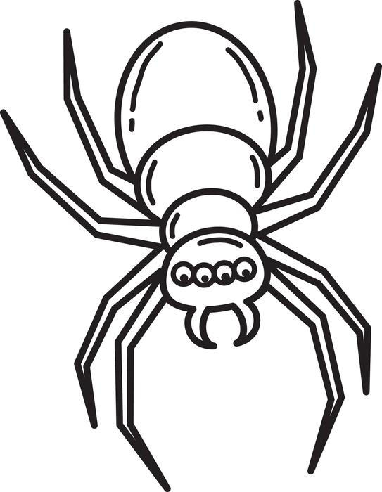 Free Spider Coloring Pages For Kids