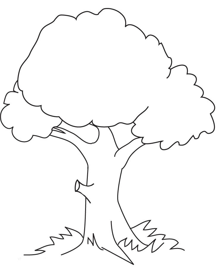 Free Tree Coloring Pages For Kids