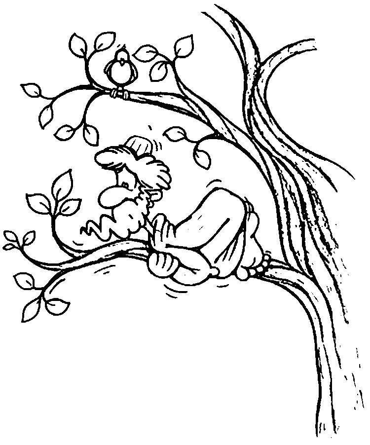 Free Zacchaeus Coloring Pages For Kids